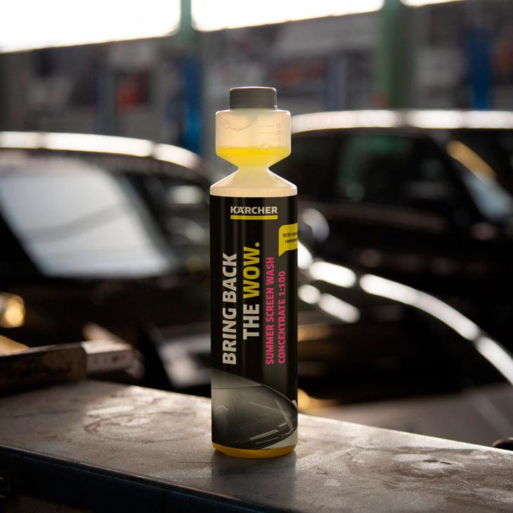 Концентрат летней стеклоомывающей жидкости Karcher RM 672, 0.25 л